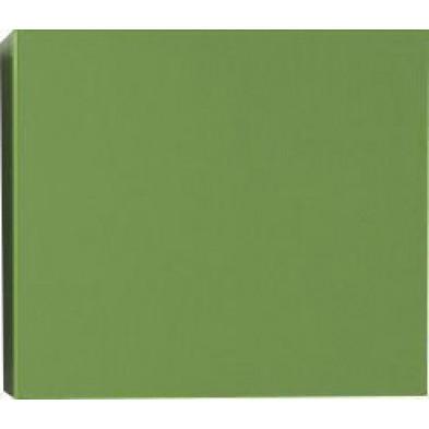 Meuble suspendu Cube design vert en panneaux mélaminés de haute qualité L. 57 x P. 31 x H. 51 cm  Collection Mollie